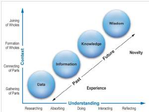 The Essence of Knowing Learning & Understanding